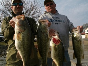 big largemouths