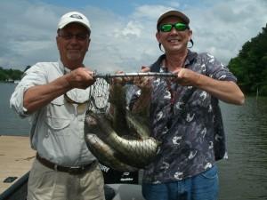 Quality bass on lay lake fishing alabama reed 39 s guide for Logan martin lake fishing report