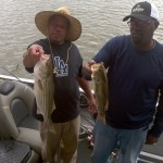 Lake Bass
