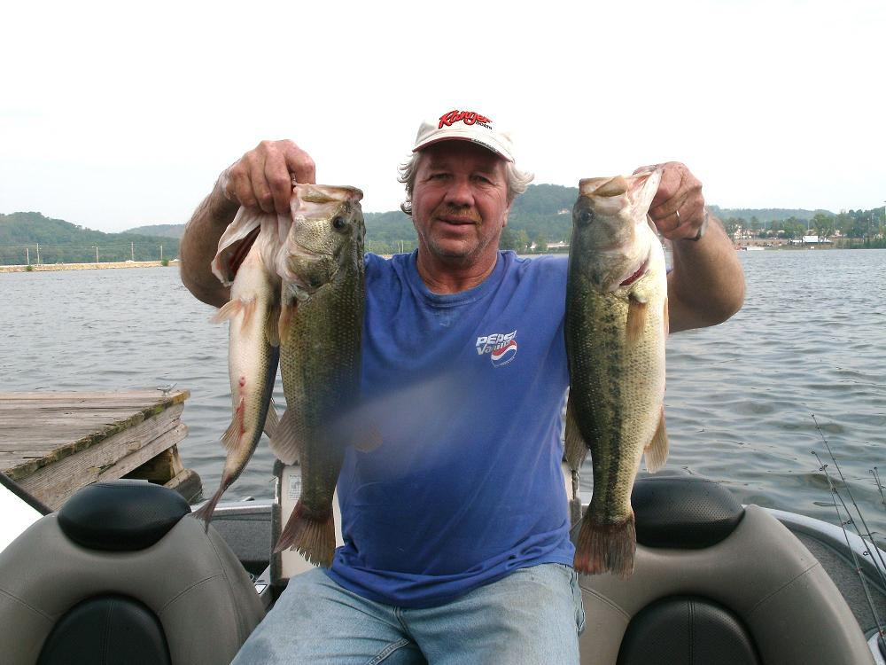 Summer on alabama s tennessee river impoundments for Fish in alabama