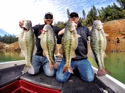 A guided bass fishing trip to any lake in alabama makes a for Fish in alabama
