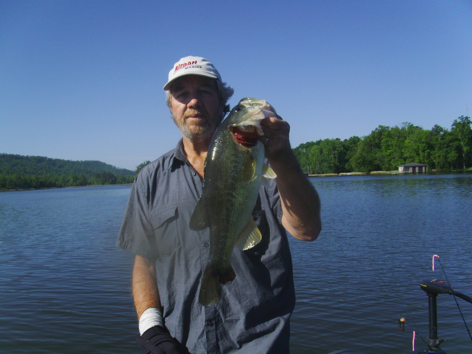 Springtime bass fishing and dealing with fishing pressure for Fishing in alabama